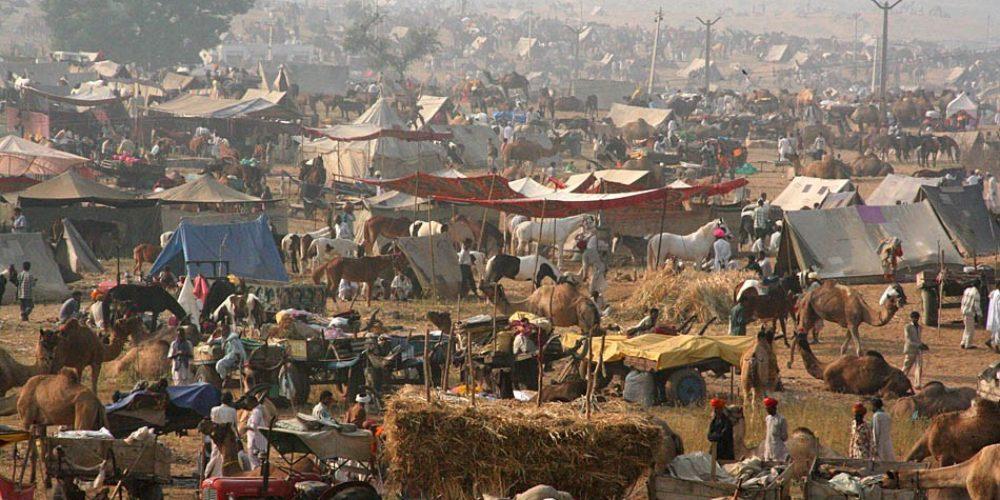 Festival à Pushkar